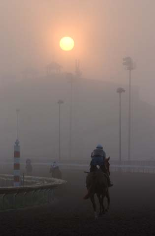 morning mist at the racetrack